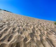 Dune dell'orso di sonno Fotografia Stock Libera da Diritti