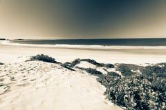 Dune della baia della spiaggia d'annata Fotografie Stock