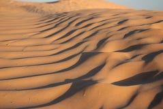 Dune della sabbia Fotografia Stock