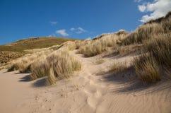 Dune della spiaggia Fotografie Stock Libere da Diritti