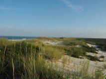 Dune della spiaggia di estate Immagine Stock Libera da Diritti
