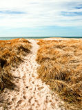 Dune of Denmark Stock Photo