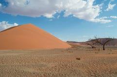 Dune 45, Desert Landscape, Sossusvlei, Namibia. Dune 45, Desert Landscape in Sossusvlei, Namibia Royalty Free Stock Photography