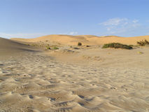 Dune in a desert. Sand land Royalty Free Stock Image