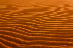 Dune in the desert, sculpted by the wind. Sand Texture. royalty free stock photo