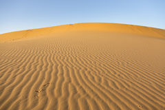 Dune in the desert Royalty Free Stock Images