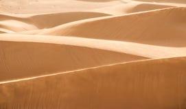 Dune in deserto Fotografie Stock Libere da Diritti
