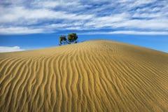 Dune di Death Valley Fotografie Stock Libere da Diritti
