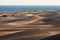 Dune di Gran Canaria in Maspalomas Fotografie Stock Libere da Diritti