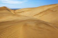 Dune di Maspalomas Fotografia Stock
