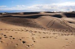 Dune di Maspalomas in Gran Canaria Fotografie Stock Libere da Diritti
