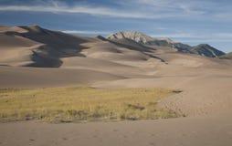Dune di sabbia Immagine Stock