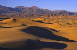 Dune di sabbia al tramonto Immagini Stock