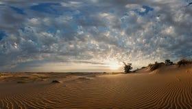 Dune di sabbia al tramonto Immagine Stock Libera da Diritti