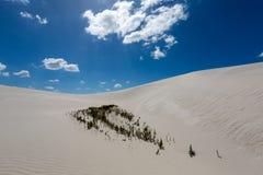 Dune di sabbia bianche Fotografia Stock Libera da Diritti