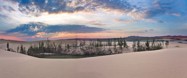 Dune di sabbia bianche su alba, Mui Ne Fotografia Stock Libera da Diritti
