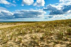 Dune di sabbia a Cape Cod Fotografia Stock
