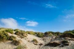 Dune di sabbia con erba e cieli blu, sabbie della curvatura Immagine Stock