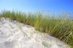 Dune di sabbia con erba e cielo blu Fotografia Stock Libera da Diritti