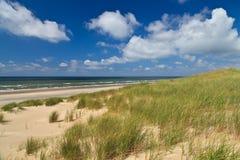 Dune di sabbia con l'erba del casco fotografie stock libere da diritti