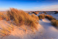 Dune di sabbia con l'erba del casco fotografia stock libera da diritti