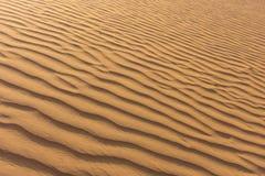 Dune di sabbia d'increspatura nei UAE immagini stock