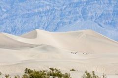 Dune di sabbia in Death Valley Immagini Stock Libere da Diritti
