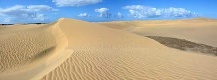 Dune di sabbia dei maspalomas Fotografie Stock Libere da Diritti