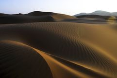 Dune di sabbia del deserto di Al Khali dello sfregamento Fotografia Stock