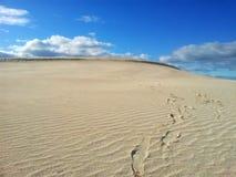 Dune di sabbia del deserto con le orme immagini stock