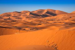 Dune di sabbia del Erg Chebbi int lui deserto di Sahara, Marocco immagine stock
