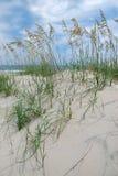 Dune di sabbia della spiaggia Fotografia Stock Libera da Diritti