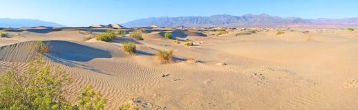 Dune di sabbia di Death Valley - panorama fotografia stock libera da diritti