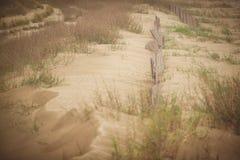Dune di sabbia di grande isola Fotografie Stock Libere da Diritti