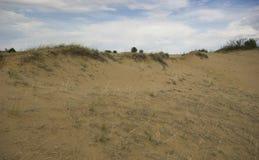 Dune di sabbia di Saskatchewan Immagine Stock