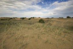 Dune di sabbia di Saskatchewan Fotografia Stock