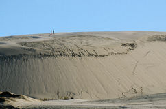 Dune di sabbia di Te Paki fotografia stock