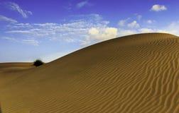 Dune di sabbia di Thar Fotografie Stock