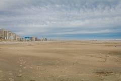 Dune di sabbia di Diamond Beach in primavera, cresta di foresta vergine, NJ immagini stock