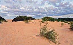 Dune di sabbia esterne della spiaggia delle banche Fotografie Stock