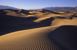 Dune di sabbia increspate al tramonto Fotografia Stock Libera da Diritti
