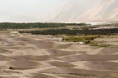 Dune di sabbia nel deserto freddo della valle di Nubra di ladakh Immagini Stock Libere da Diritti