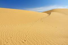 Dune di sabbia nel Sahara Fotografie Stock Libere da Diritti