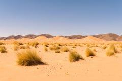 Dune di sabbia Ouzina, deserto di Shara, Marocco Immagine Stock Libera da Diritti