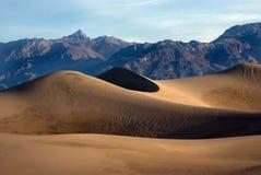 dune di sabbia pacifiche in sole di primo mattino Immagini Stock Libere da Diritti