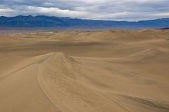 Dune di sabbia piane del Mesquite Fotografie Stock Libere da Diritti