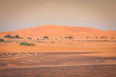 Dune di sabbia in Sahara Desert, Merzouga, Marocco Fotografia Stock