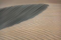 Dune di sabbia, strutture differenti, Maspalomas, Gran Canaria, Spagna Immagine Stock Libera da Diritti