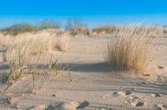 Dune di sabbia sulla costa baltica Fotografia Stock