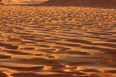 Dune di sabbia a Sunset#2: Sfregamento Al Khali Desert Fotografie Stock Libere da Diritti